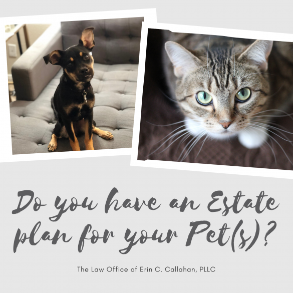 Estate Planning for your Pet(s)